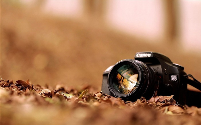 Canon EOS30D-Brand desktop wallpaper Views:2636