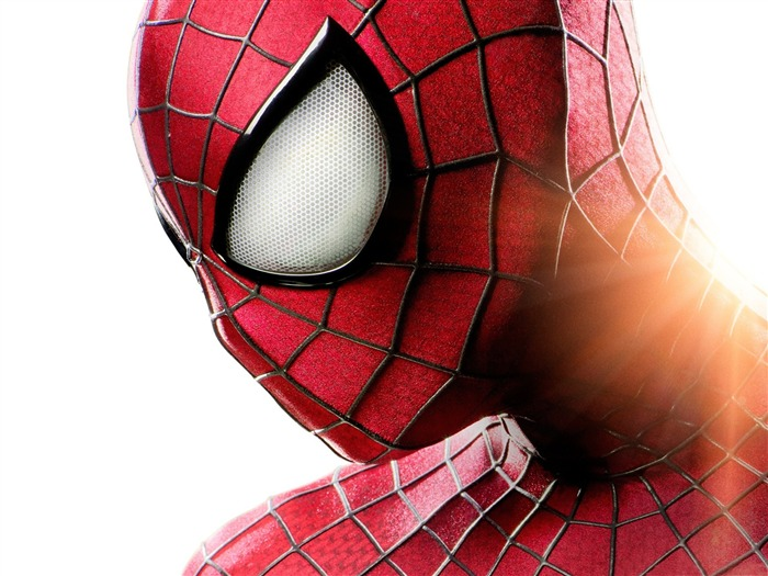 The Amazing Spider-Man 2 Movie HD wallpaper Views:12812