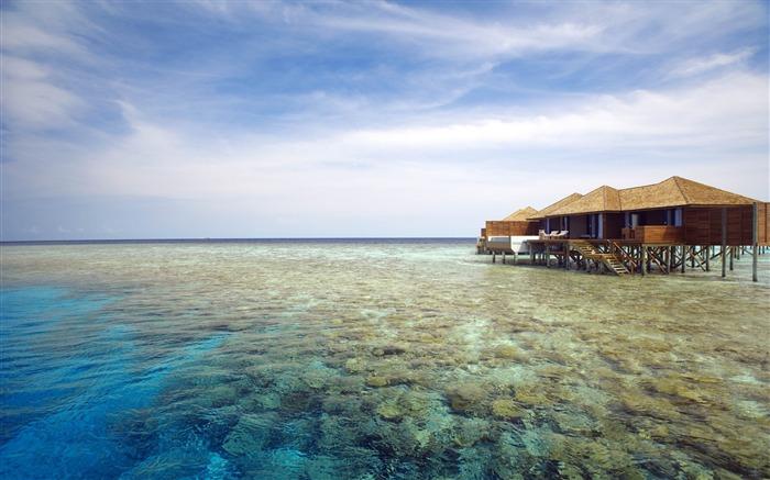 马尔代夫海洋沙滩-风光高清壁纸 预览