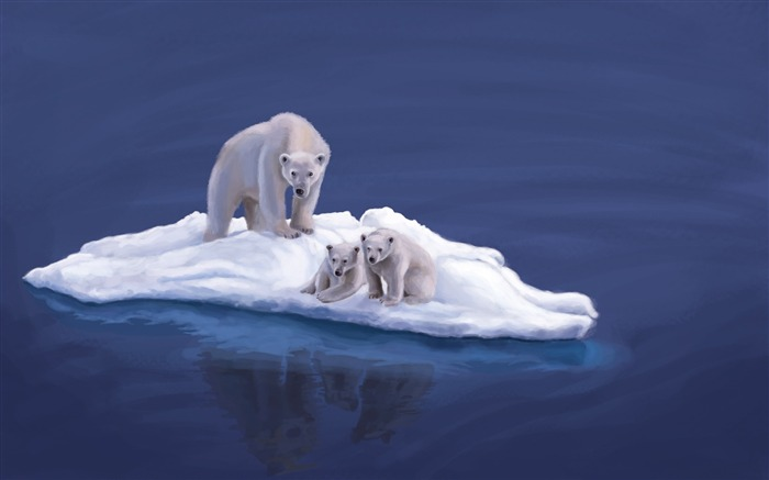 polar bears-animal Photo Wallpaper Views:2922