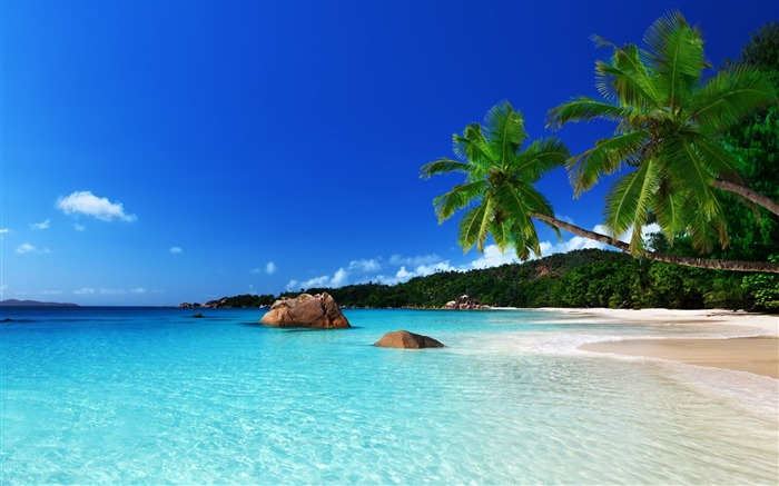 tropical island-scenery wallpaper Views:1758