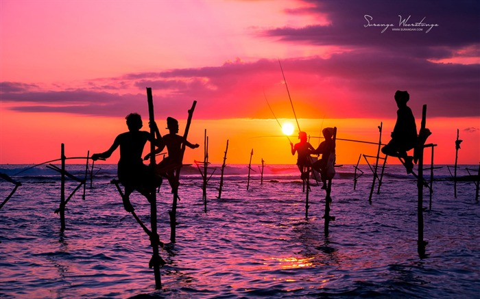 Beach Fishing-Sri Lanka Win8 wallpaper Views:5208
