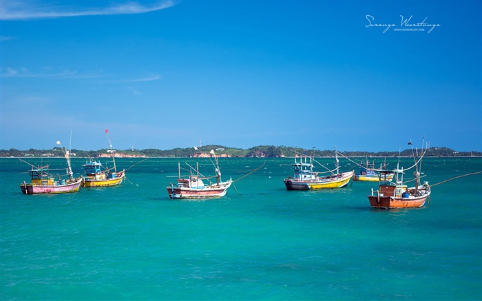 Beach fishing boats-Sri Lanka Win8 wallpaper Views:3927