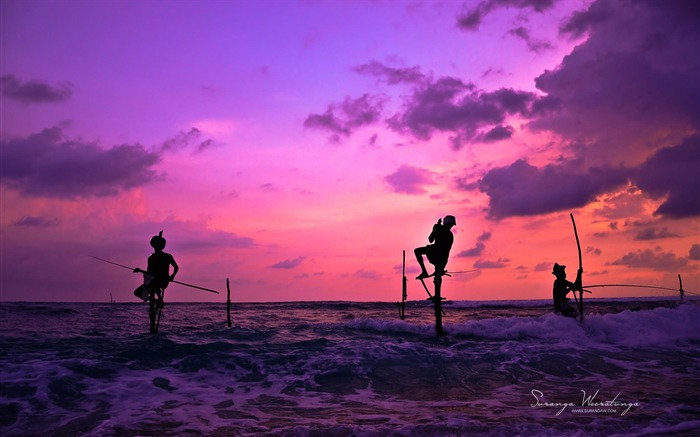 Fishing at sunset-Sri Lanka Win8 wallpaper Views:4722