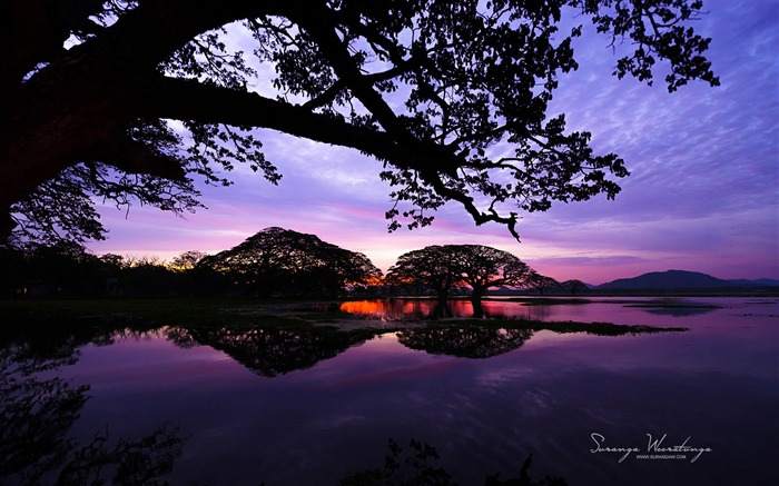 Sunset Lakes-Sri Lanka Win8 wallpaper Views:3538