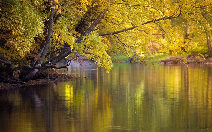colourful water-Landscape HD Wallpaper Views:3768