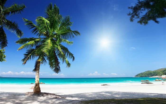 sunny beach-Landscape HD Wallpaper Views:2822