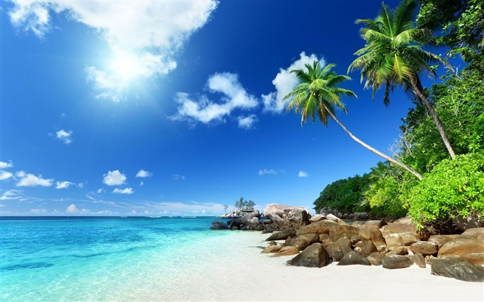 paradise beach-Summer Photo HD Wallpaper Views:3343