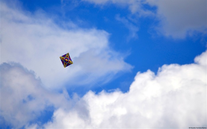 Kite on the blue sky-Windows Theme Wallpaper Views:2975