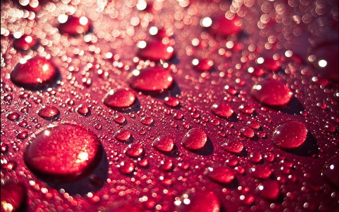 Water Drops-High quality wallpapers Views:1901