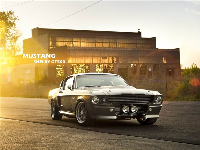 mustang shelby gt500-High quality wallpaper Views:3431