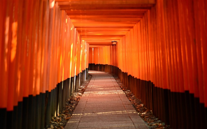 torii leading-High quality wallpaper Views:2149
