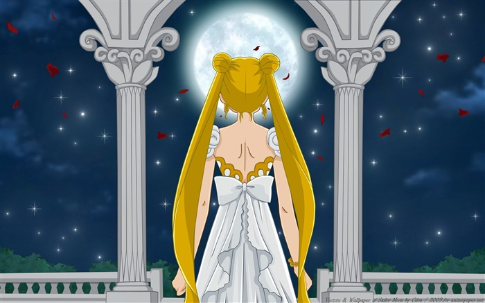 Sailor Moon Anime HD Desktop Wallpaper 01 Views:2911