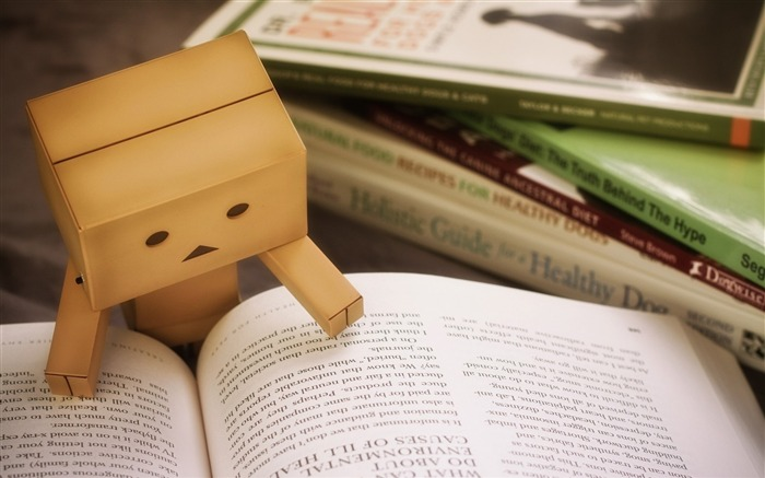 danbo cardboard-high quality Wallpapers Views:3227