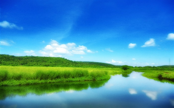 Green Field With Blue Sky-Scenery HD Wallpapers Views:3586