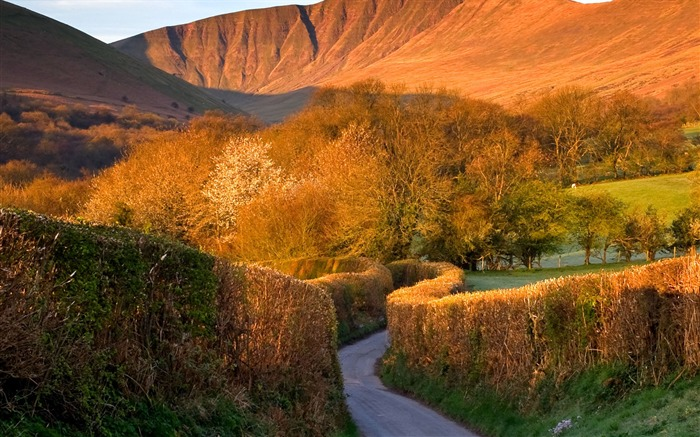 Brecon Beacons Mountain-Windows 10 HD Wallpaper Views:7989