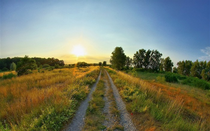 Road Through The Field-Photos HD Wallpaper Views:2200