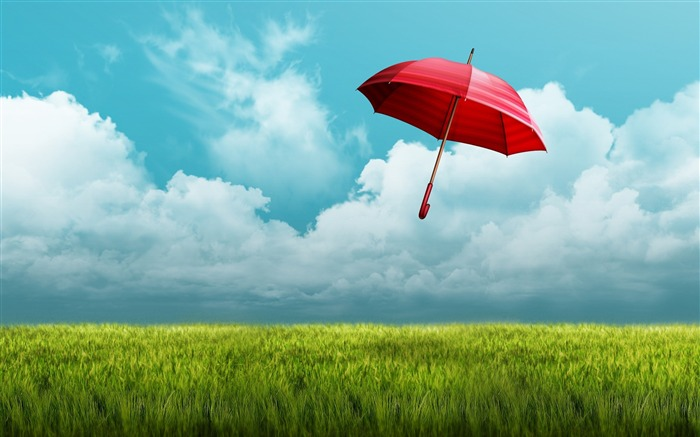 umbrella fields-Photos HD Wallpaper Views:1704