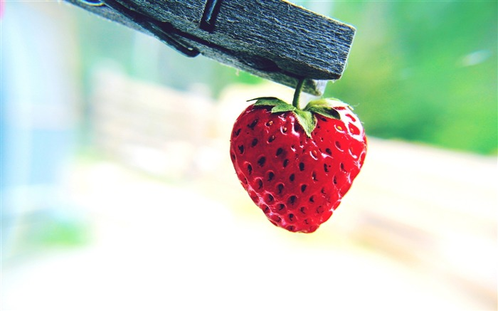 Cute Red Strawberry-High Quality Wallpaper Views:2292