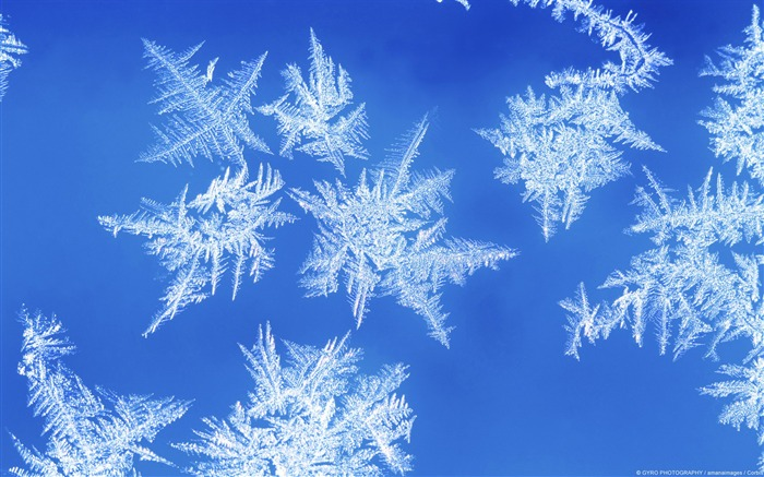 Formation of ice crystals-Windows 10 HD Wallpaper Views:6194