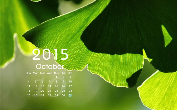 2015 Calendar Desktop Themes Wallpaper Views:14744