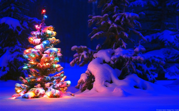 Title:Snowflakes and Christmas lights-Windows 10 HD Wallpaper Views:9941