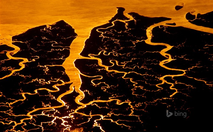 Lava flows-Bing theme wallpaper Views:1624