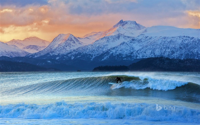 Winter Surfing-Bing theme wallpaper Views:1390