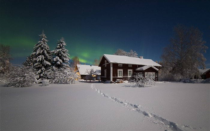 northern lights winter snow-Landscapes HD Wallpaper Views:3209