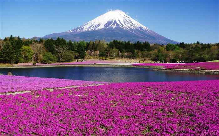 Honshu Island Japan-HD Scenery Wallpaper Views:3862