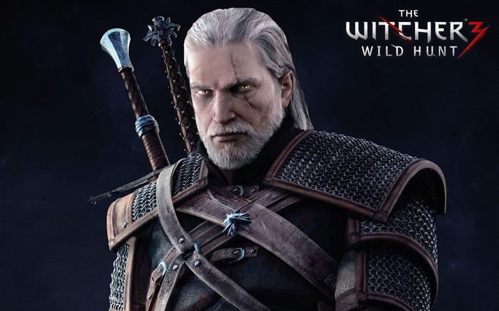 THE WITCHER 3 WILD HUNT Game HD Wallpaper 05 Views:2701