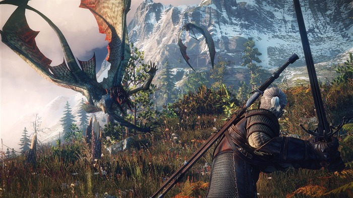 THE WITCHER 3 WILD HUNT Game HD Wallpaper 10 Views:2822
