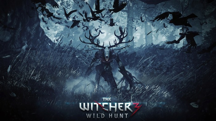 THE WITCHER 3 WILD HUNT Game HD Wallpaper 17 Views:2996