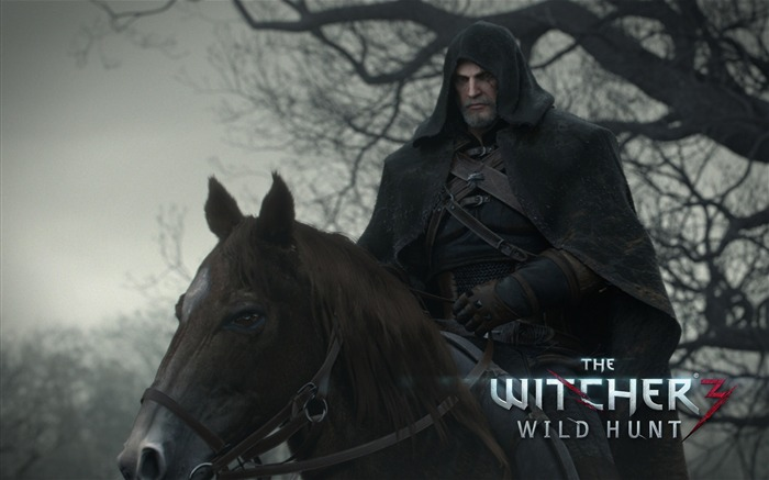 THE WITCHER 3 WILD HUNT Game HD Wallpaper 19 Views:1842