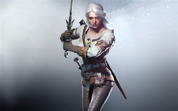 THE WITCHER 3 WILD HUNT Game HD Wallpaper 25 Views:4365
