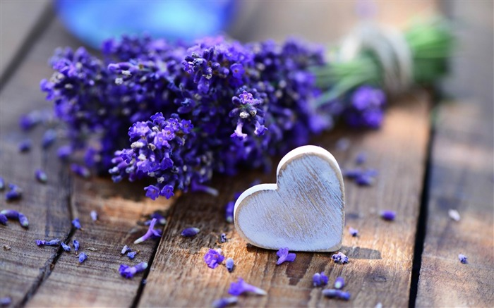 lavender and heart-Photo HD Wallpapers Views:4522