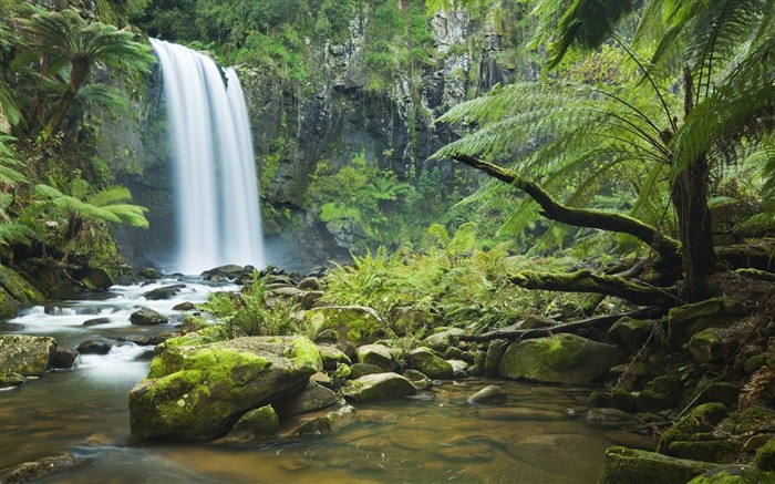 Forest Waterfalls-photo HD wallpaper Views:2804