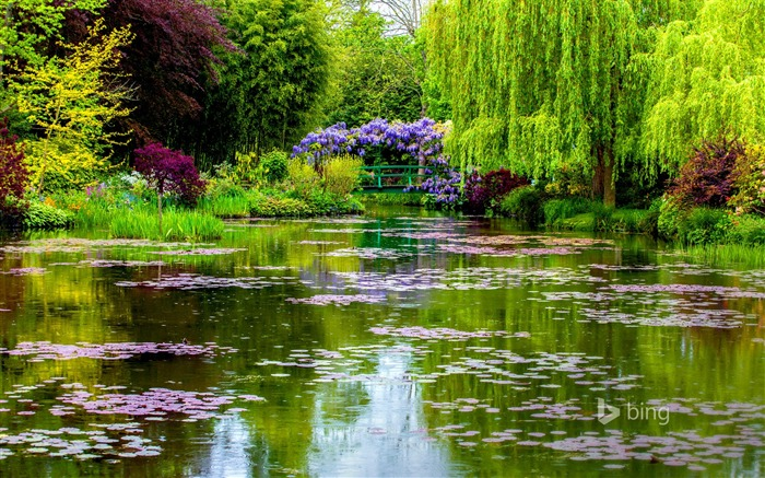 Beautiful pond garden-2015 Bing theme wallpapers Views:1785