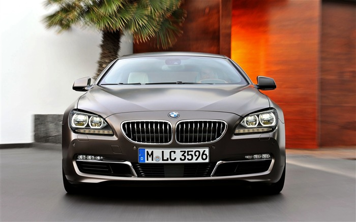 bmw front view lattice-Auto HD Wallpaper Views:2154