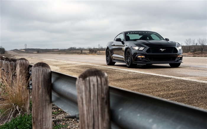 ford mustang gt hpe-Auto HD Wallpaper Views:3548