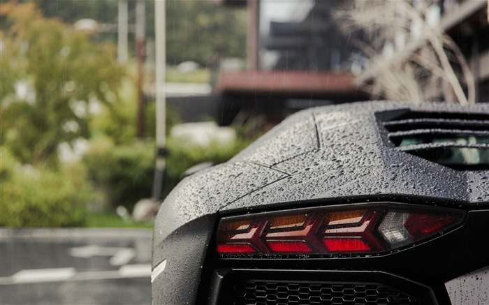 lamborghini rear water drops rain-Auto HD Wallpaper Views:2401