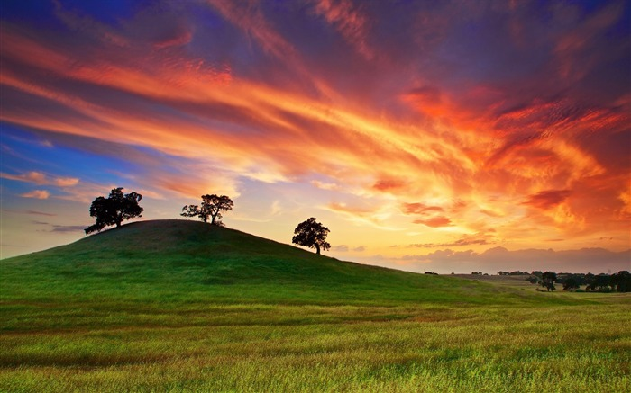 california sunset spring-Scenery HD Wallpaper Views:2795