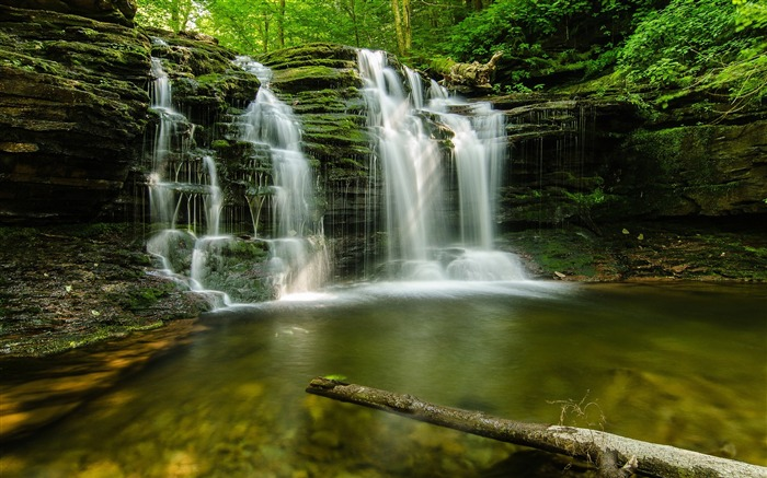 forest green waterfalls-Landscape wallpaper Views:2693