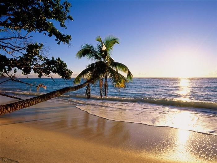 silhouette island-Nature Wallpaper Views:1759