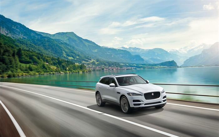 2016 Jaguar F Pace Series HD Wallpaper Views:6287