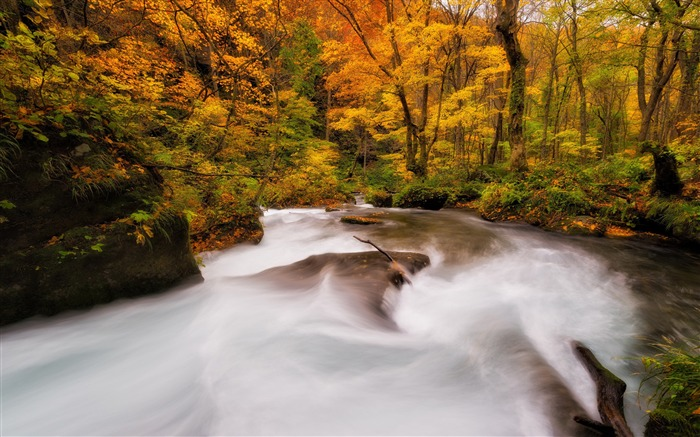 Fall rivers-HD Nature Wallpaper Views:2682