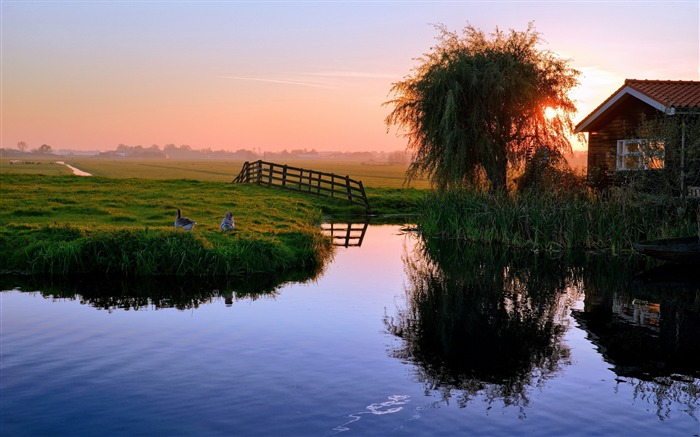 pond house sunset ducks village-Photography HD wallpaper Views:2046