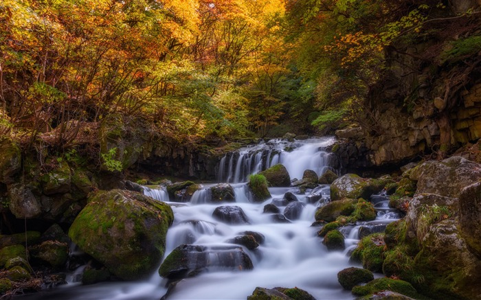 stream waterfall autumn-HD Nature Wallpaper Views:2252
