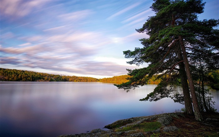 sweden lakes trees-Photography Wallpaper Views:2521