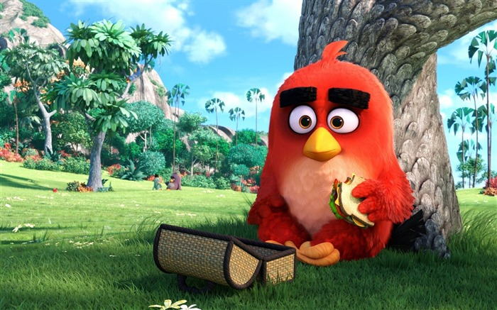 The Angry Birds Movie 2016 HD Wallpaper 01 Views:1765